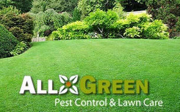All Green Pest Control and Lawn Care image 2