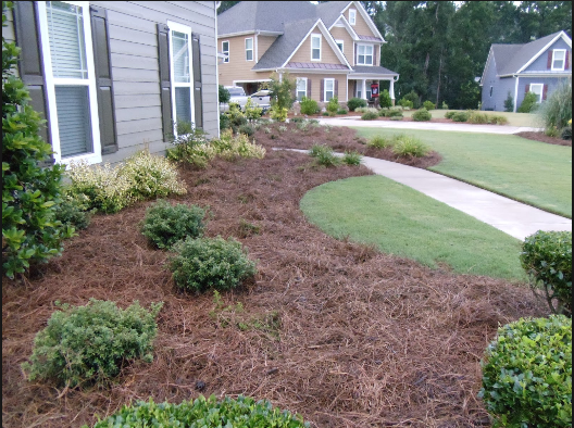 The Perfectionists Lawn and Landscape LLC. image 3
