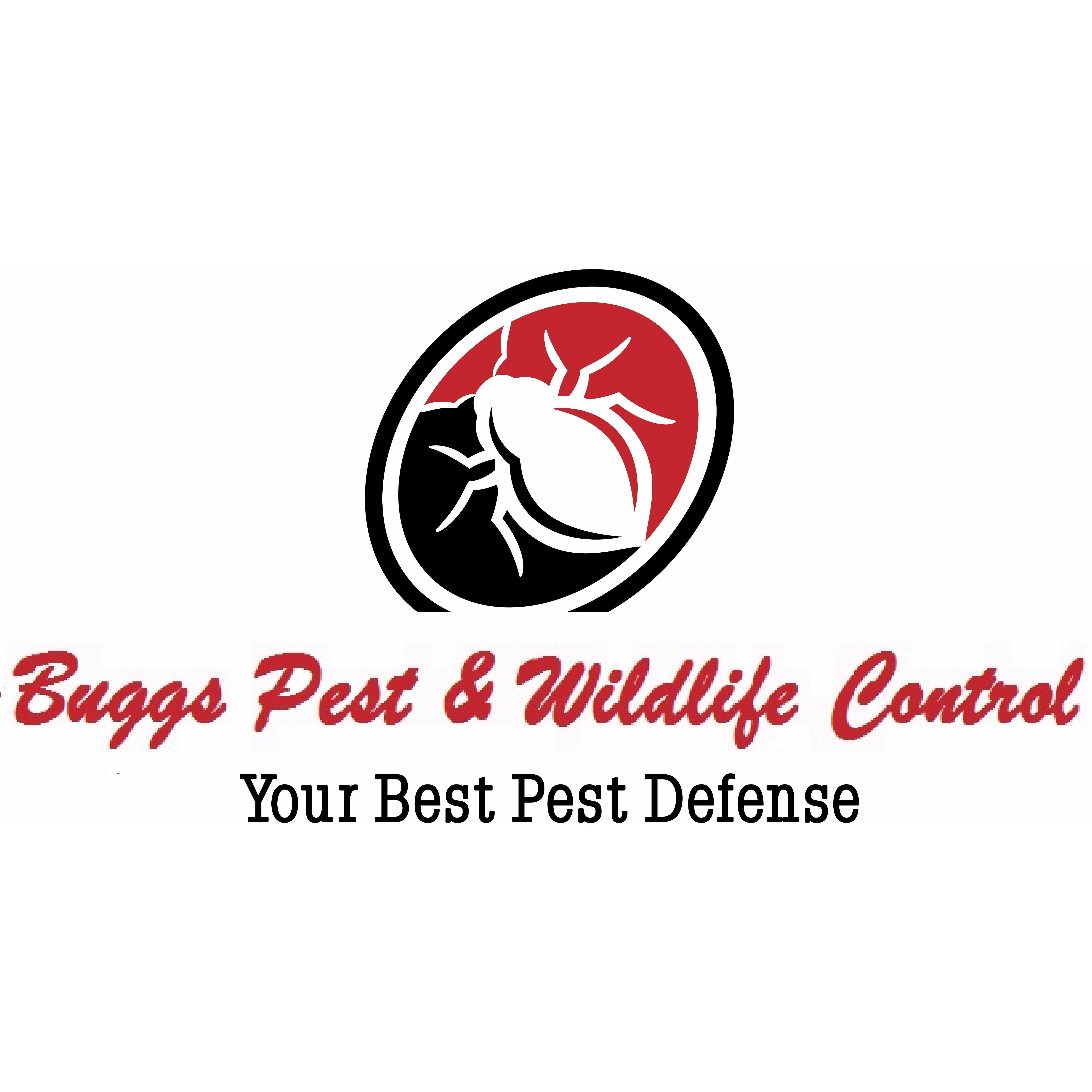 Buggs Pest & Wildlife Control