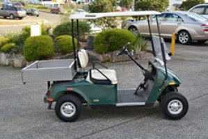 South Jersey Electric Vehicles