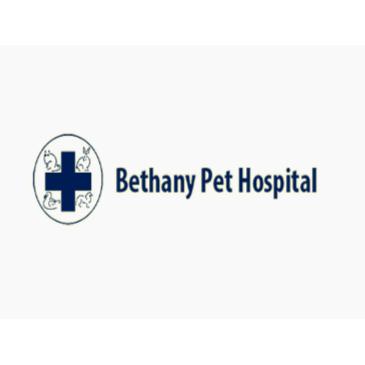 Bethany Pet Hospital
