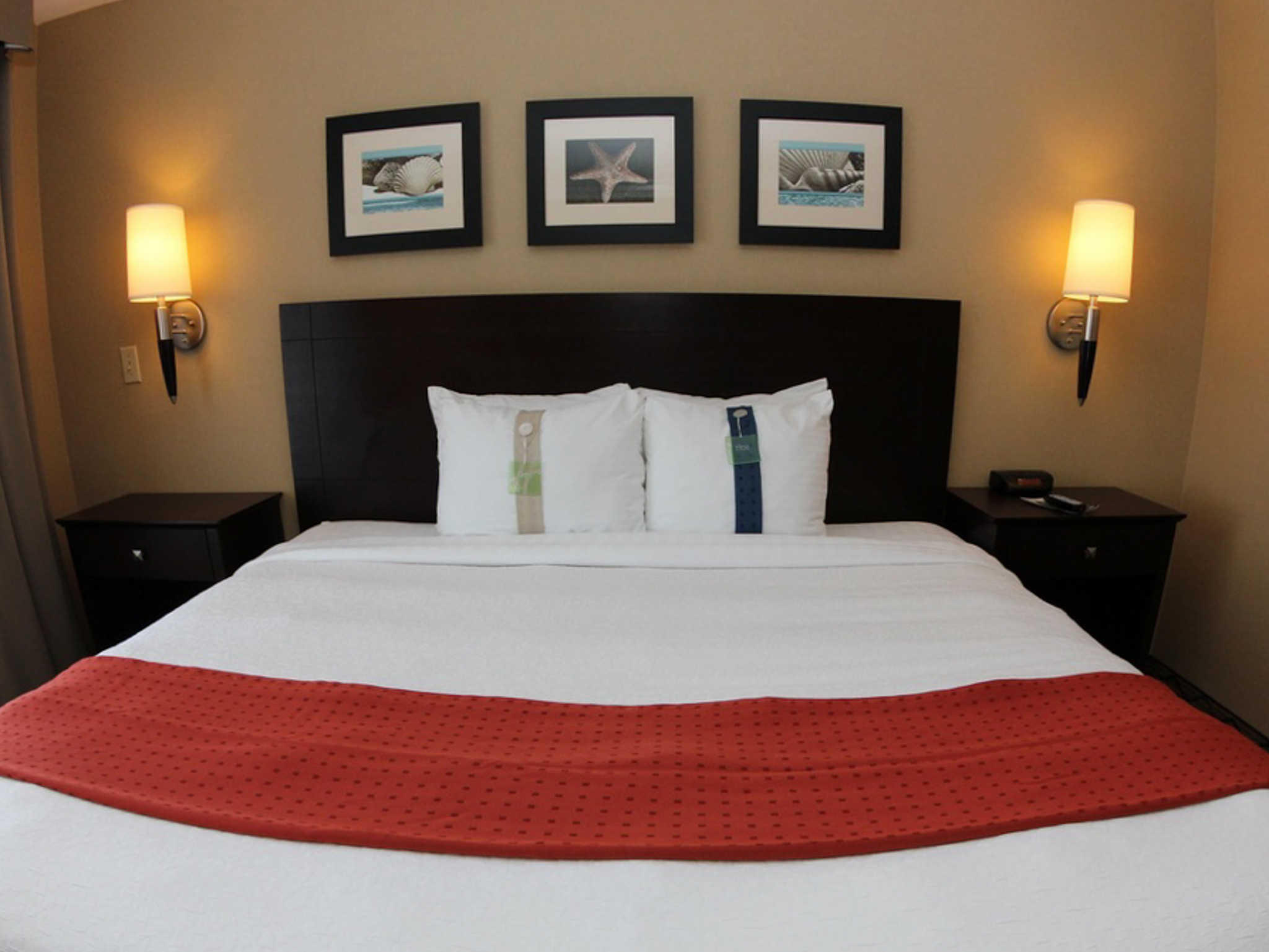 The Volare, an Ascend Hotel Collection Member image 9