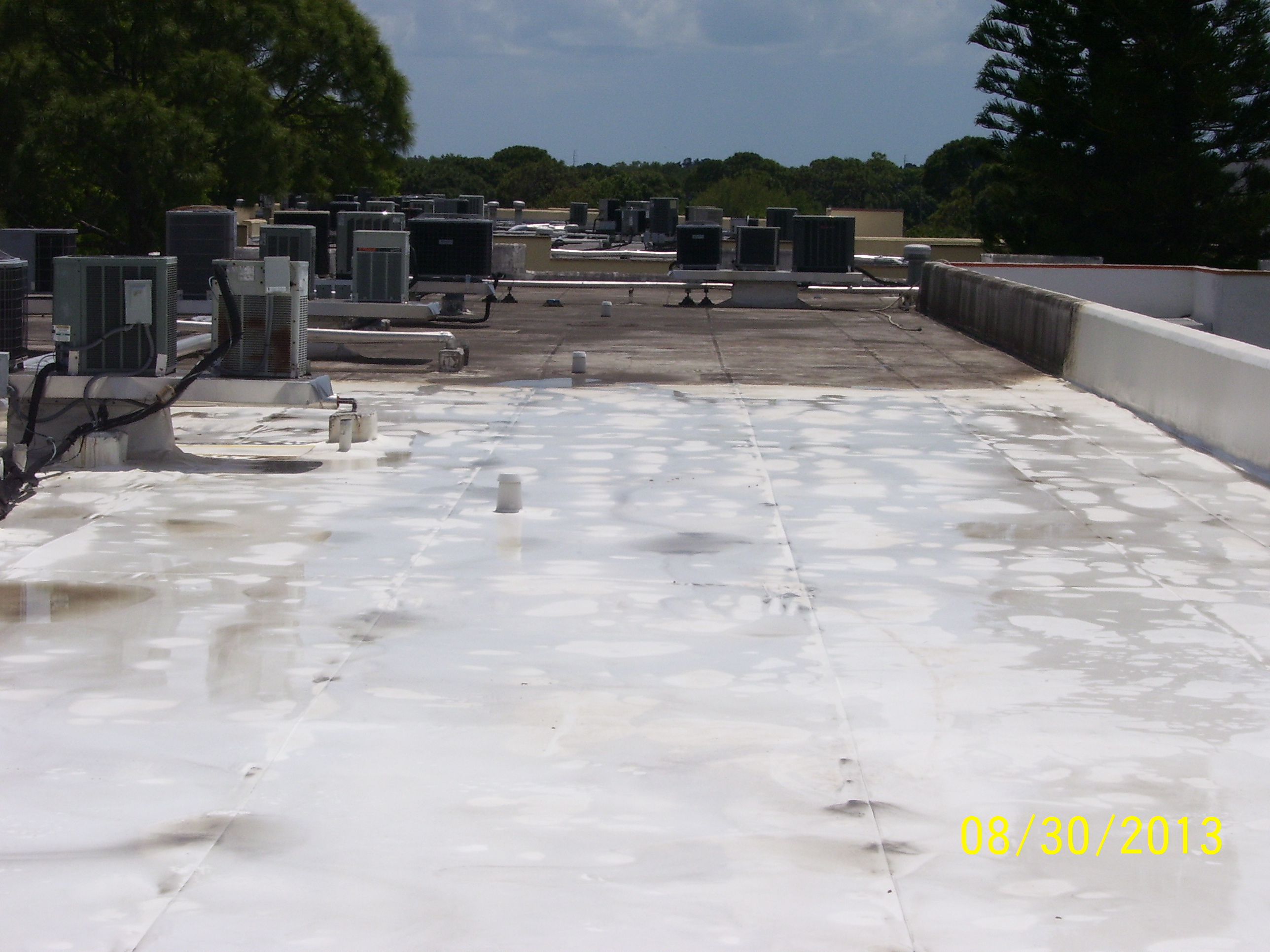 Apple Roof Cleaning Of Pasco Amp Pinellas In New Port Richey