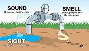 Savior Leak Protection