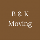 B & K Moving image 1