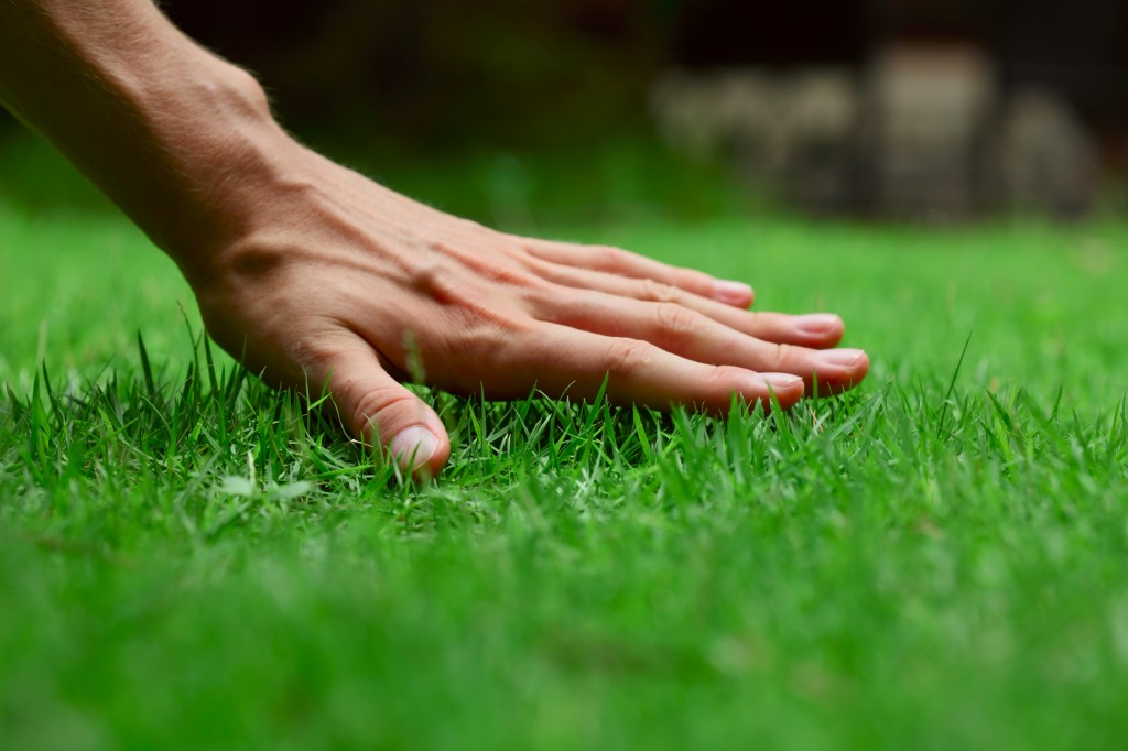 Lawn-A-Mat of Orange and Rockland image 0