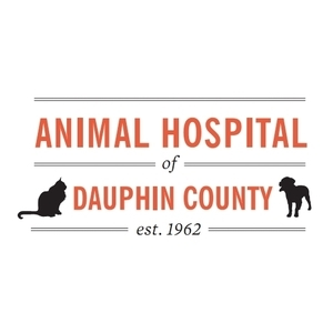 Animal Hospital of Dauphin County - Harrisburg, PA - Veterinarians