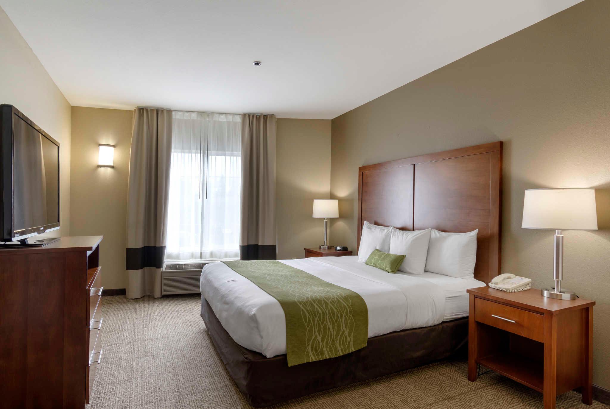 Comfort Inn & Suites Sacramento - University Area image 2