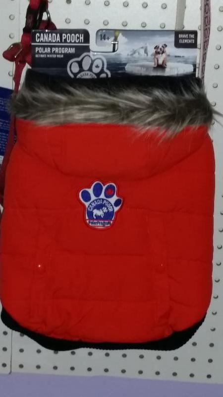 Compagnons Quatre Pattes à Gatineau: Canada Pooch winter coats
