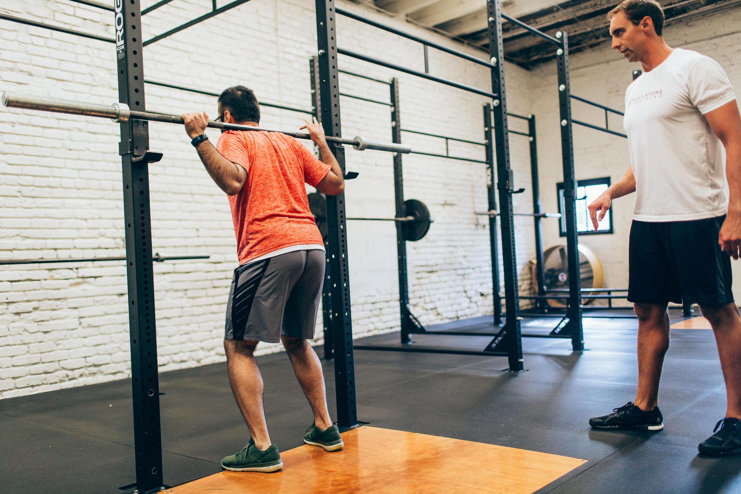 Ballatore Training image 2