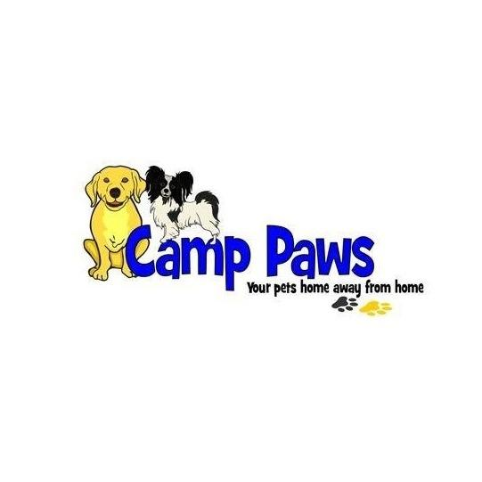 image of Camp Paws