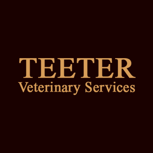 Teeter Veterinary Services image 10