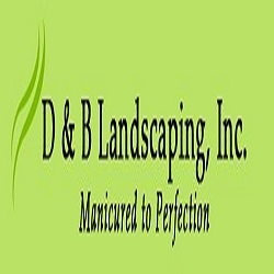 D & B Landscaping Inc image 4