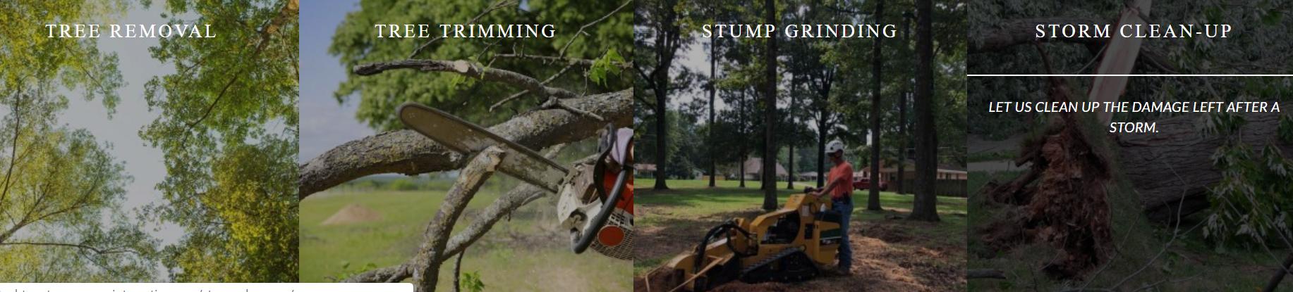 ArborTech Tree Care LLC image 0