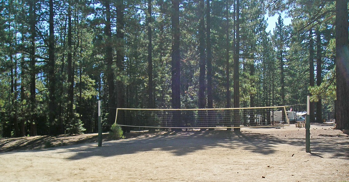 Tahoe Valley Campground image 4