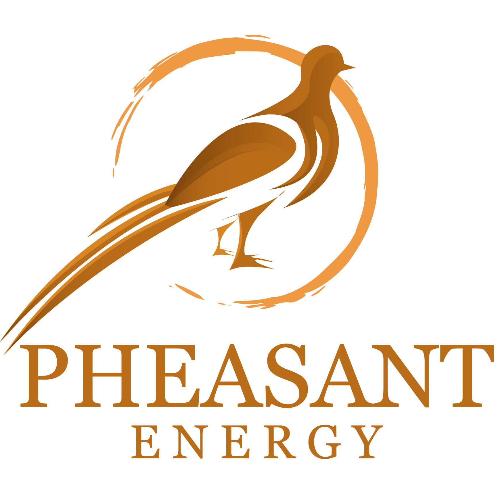 Pheasant Energy - Fort Worth, TX 76102 - (817)251-8282 | ShowMeLocal.com