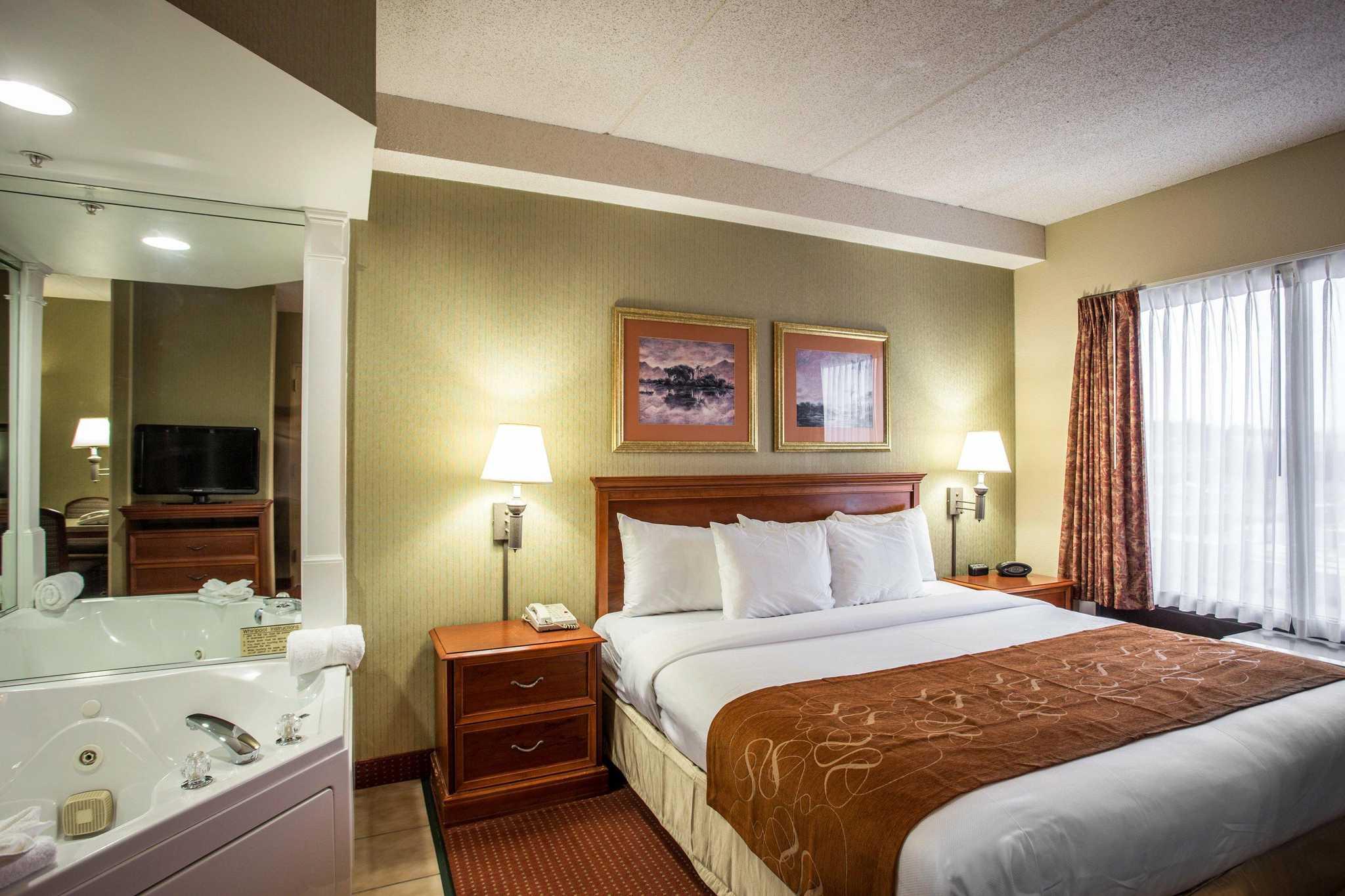 Comfort Suites Northlake image 6
