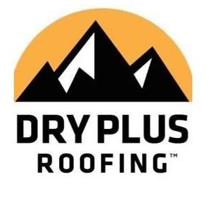 Dry Plus Roofing
