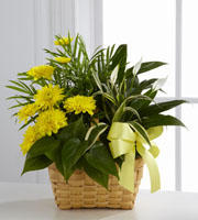 LaPorta's Flowers & Gifts image 7