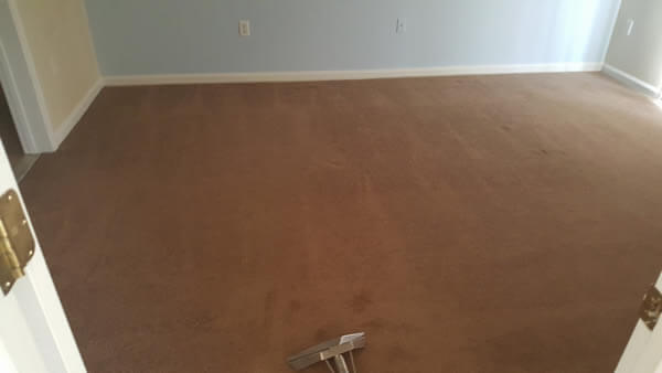 Absolute Carpet & Tile Cleaning image 12