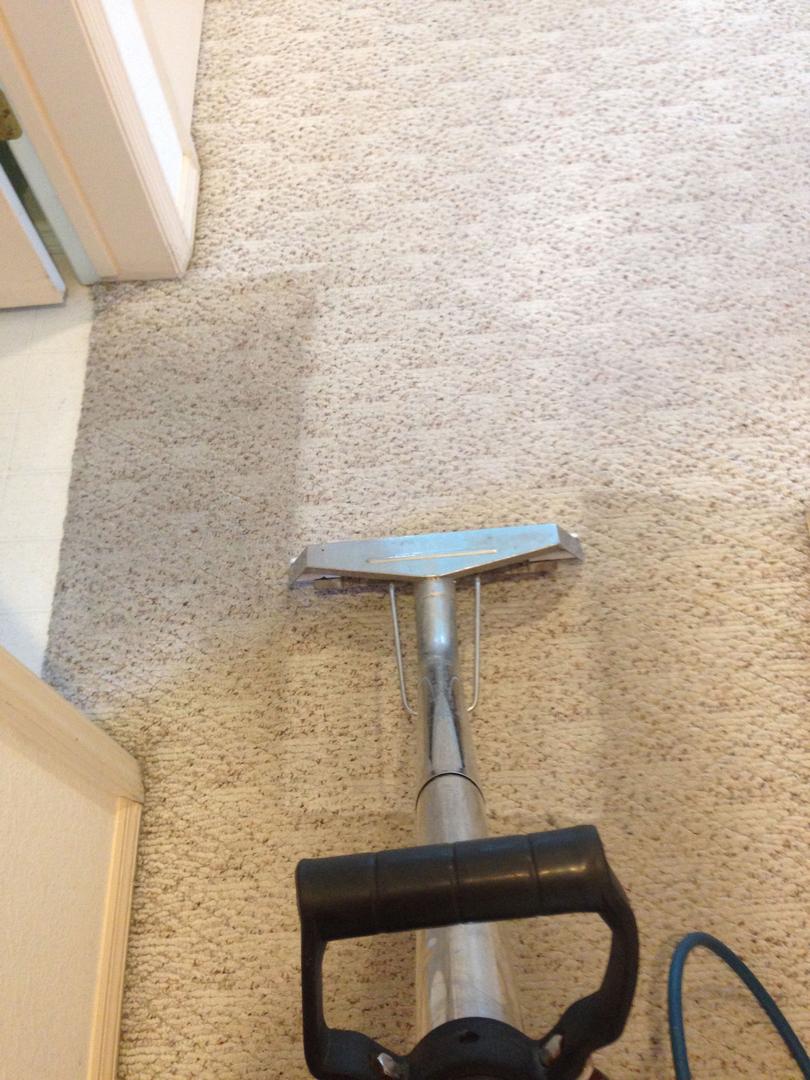 Xtreme Carpet Cleaning & Restoration image 0