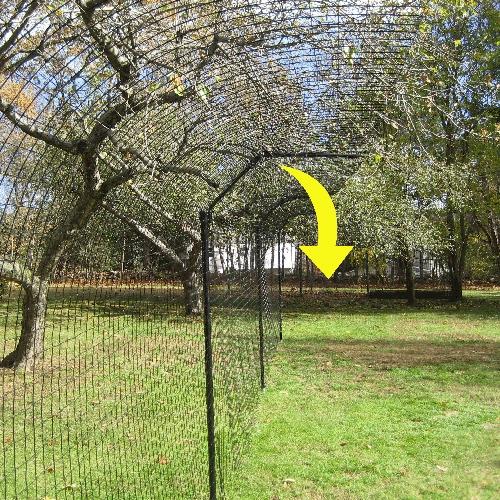 Purrfect Fence LLC image 1