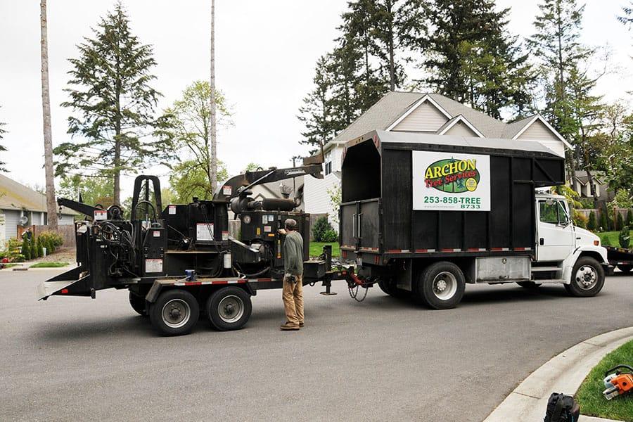 Archon Tree Services, Inc. image 17