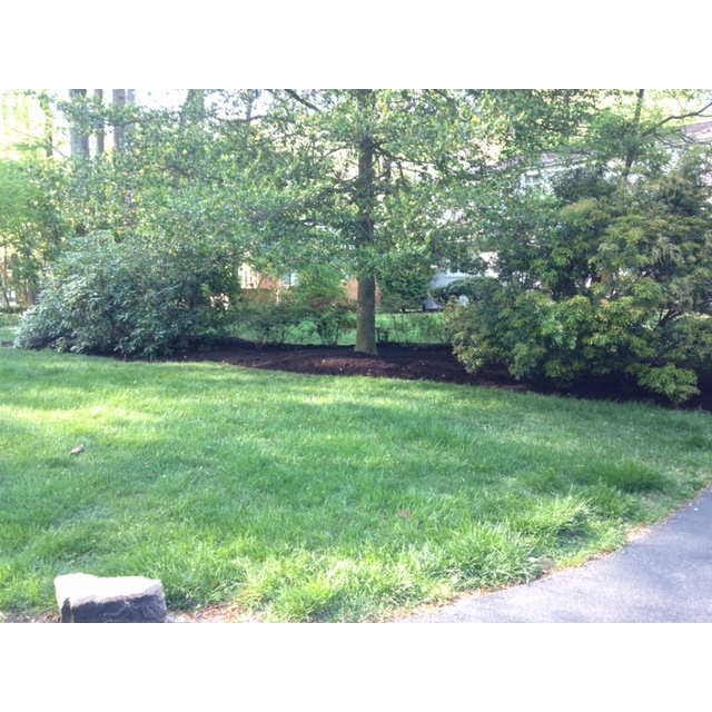 Frantum Lawncare and Landscaping LLC image 5