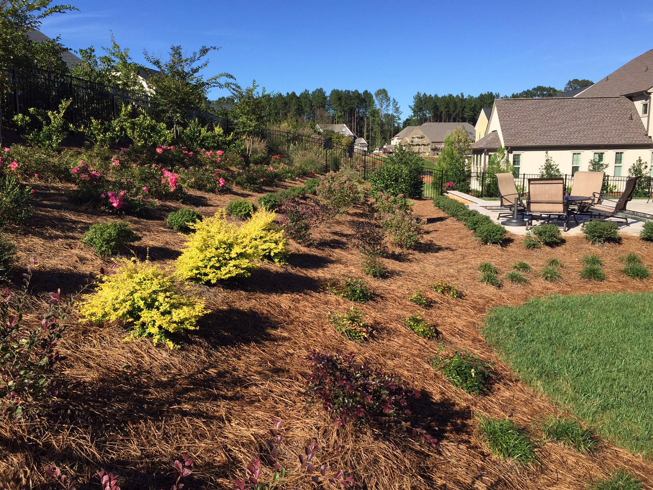 Estep Lighting and Landscaping image 1