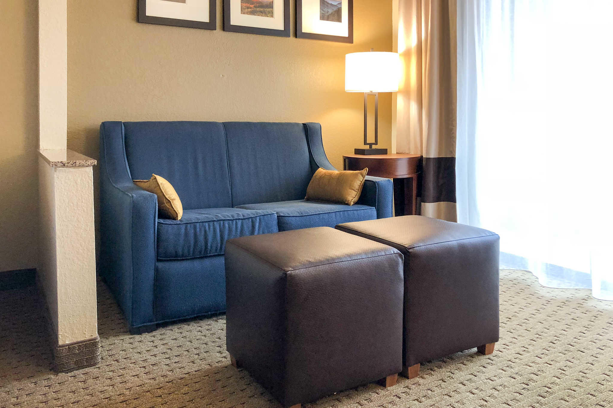 Comfort Suites Mountain Mile Area image 27