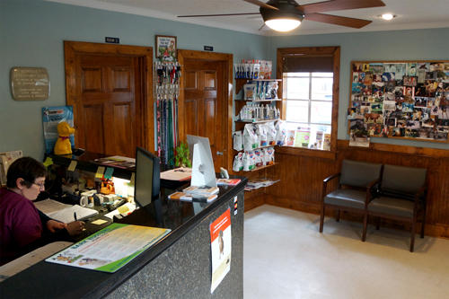Bohicket Veterinary Clinic Johns Island Sc