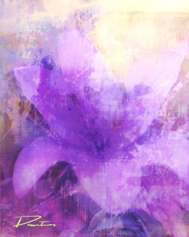 Ellimac Online Art Gallery image 5