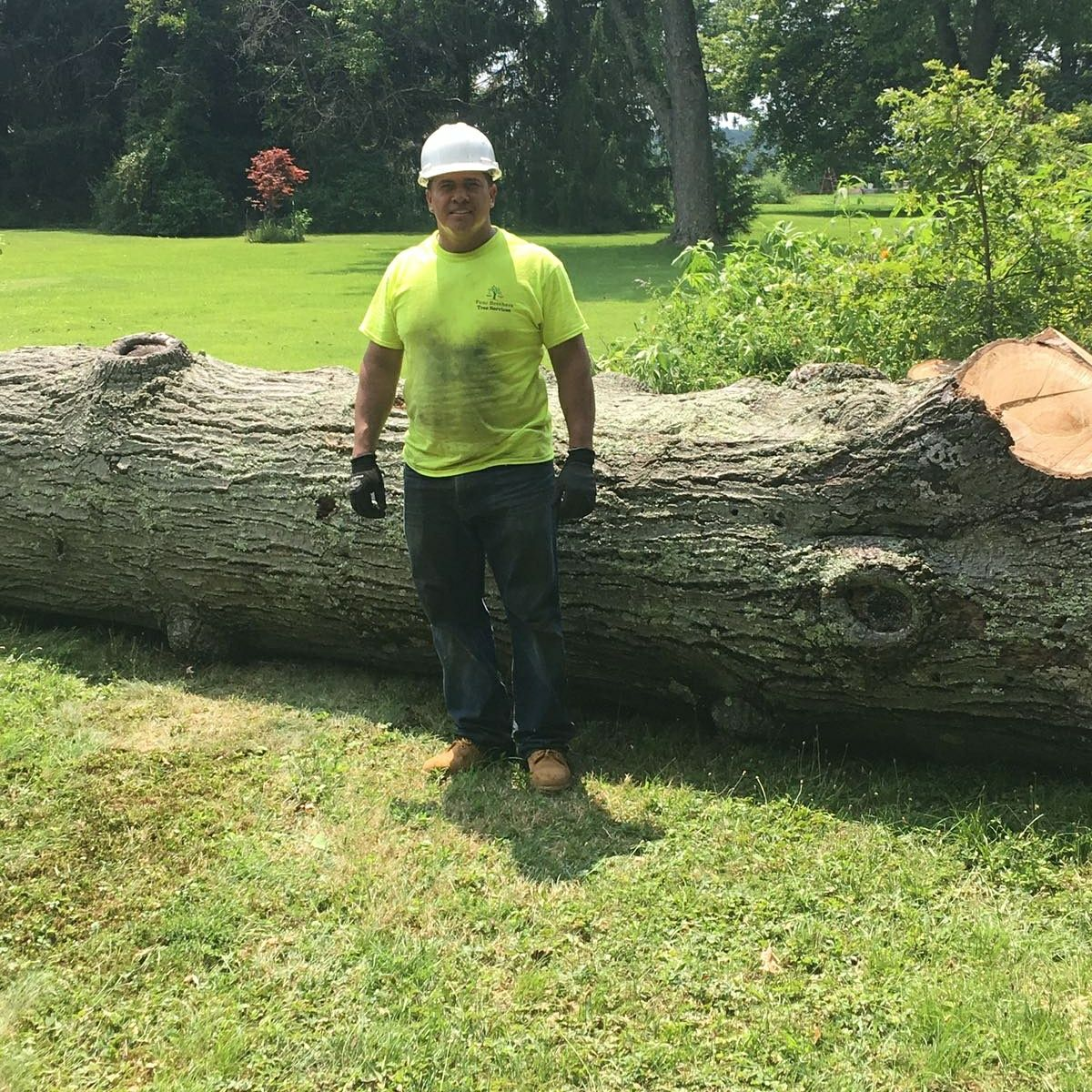Four Brothers Tree Service Inc. image 48