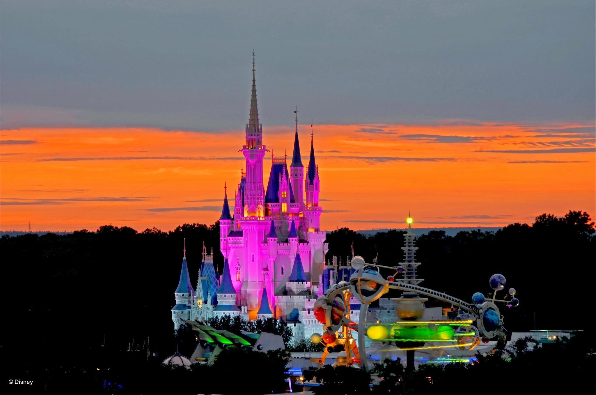 Walt Disney World® Resort image 87