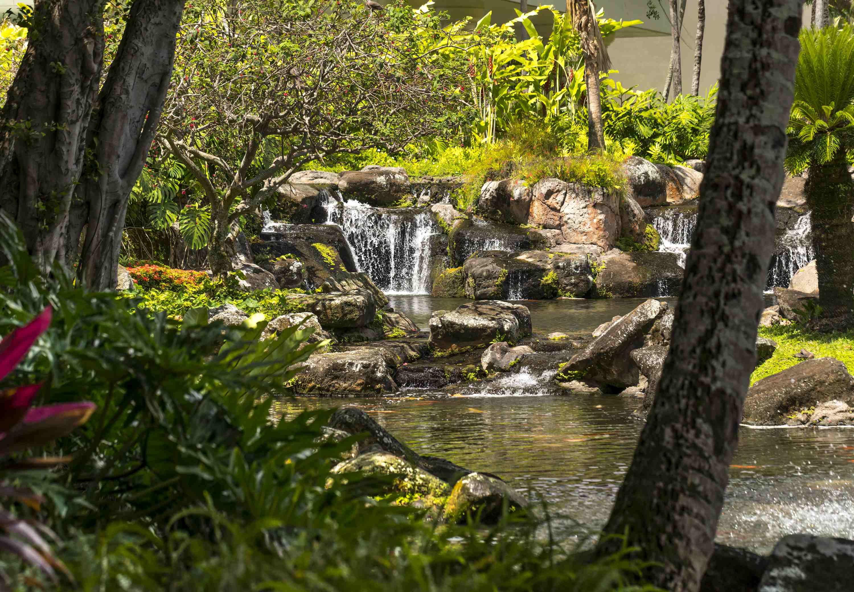 Kaua'i Marriott Resort image 24