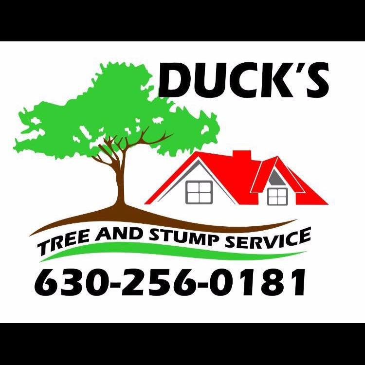 Duck's Tree & Stump Service
