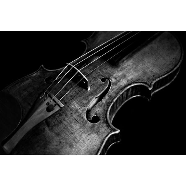 Marvin's Violins