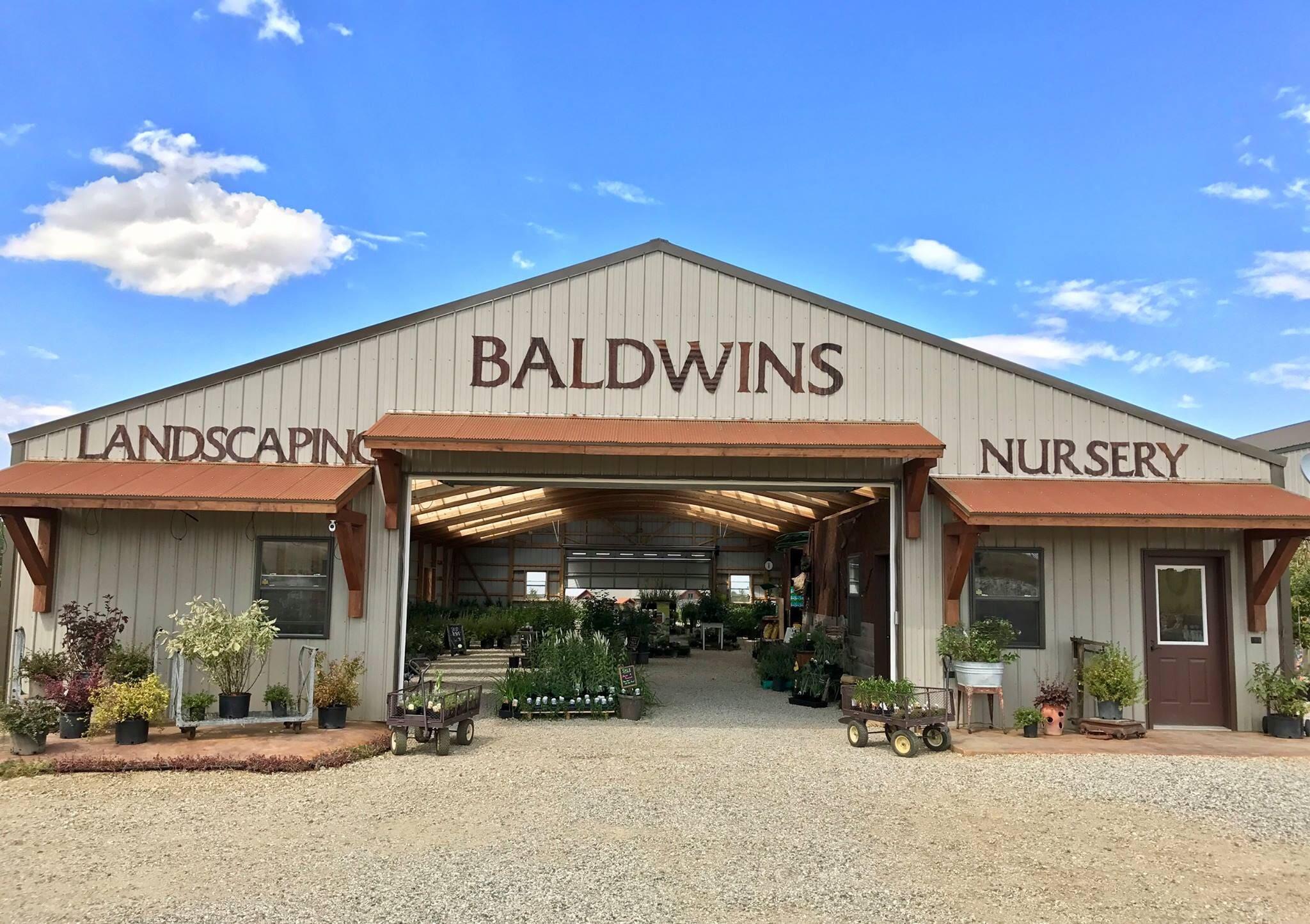 Baldwin's Customized Landscaping image 1