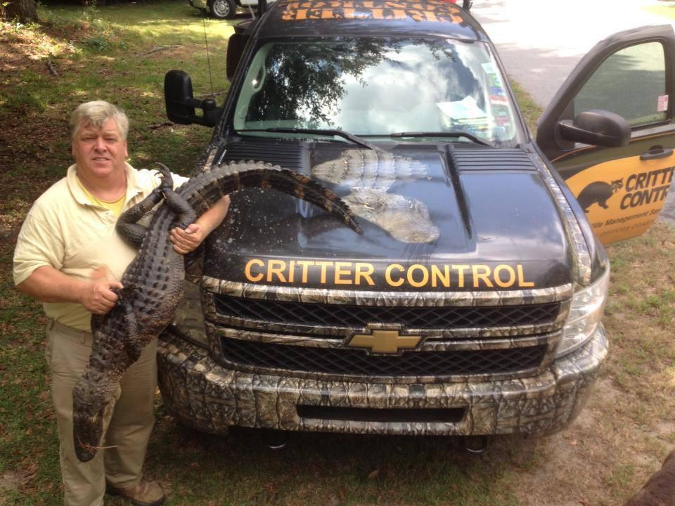 Critter Control image 2