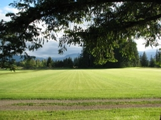 Ponderosa Sod Farm Ltd in Courtenay