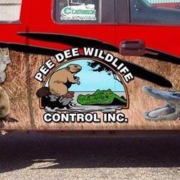 PeeDee Wildlife Control, Inc. image 7