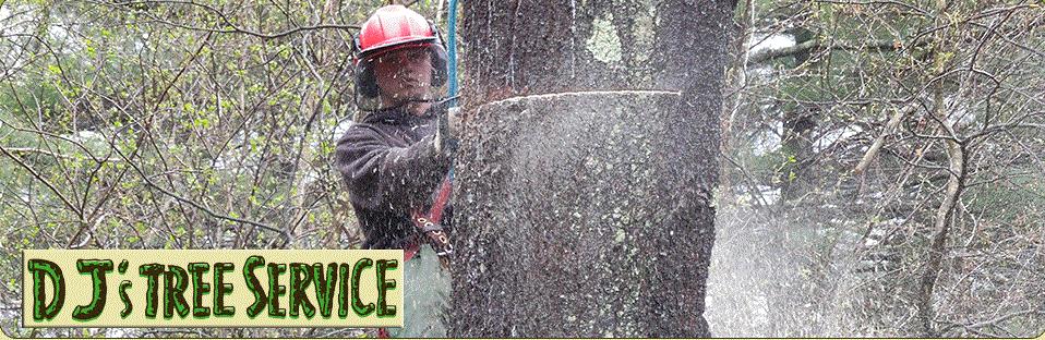 D J's Tree Service & Logging image 0