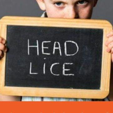 certified head lice specialist llc