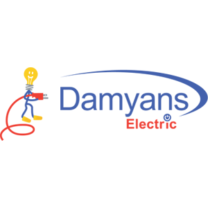 Damyan's Electric
