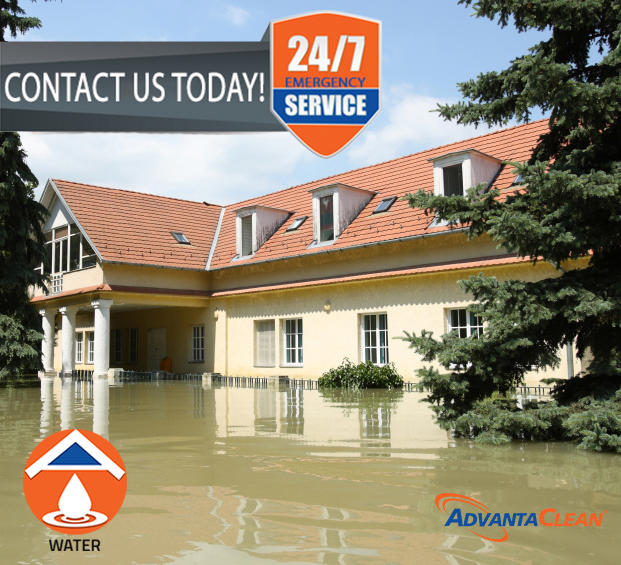 AdvantaClean of Sterling Heights and Roseville image 4