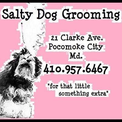 Salty Dog Grooming image 4