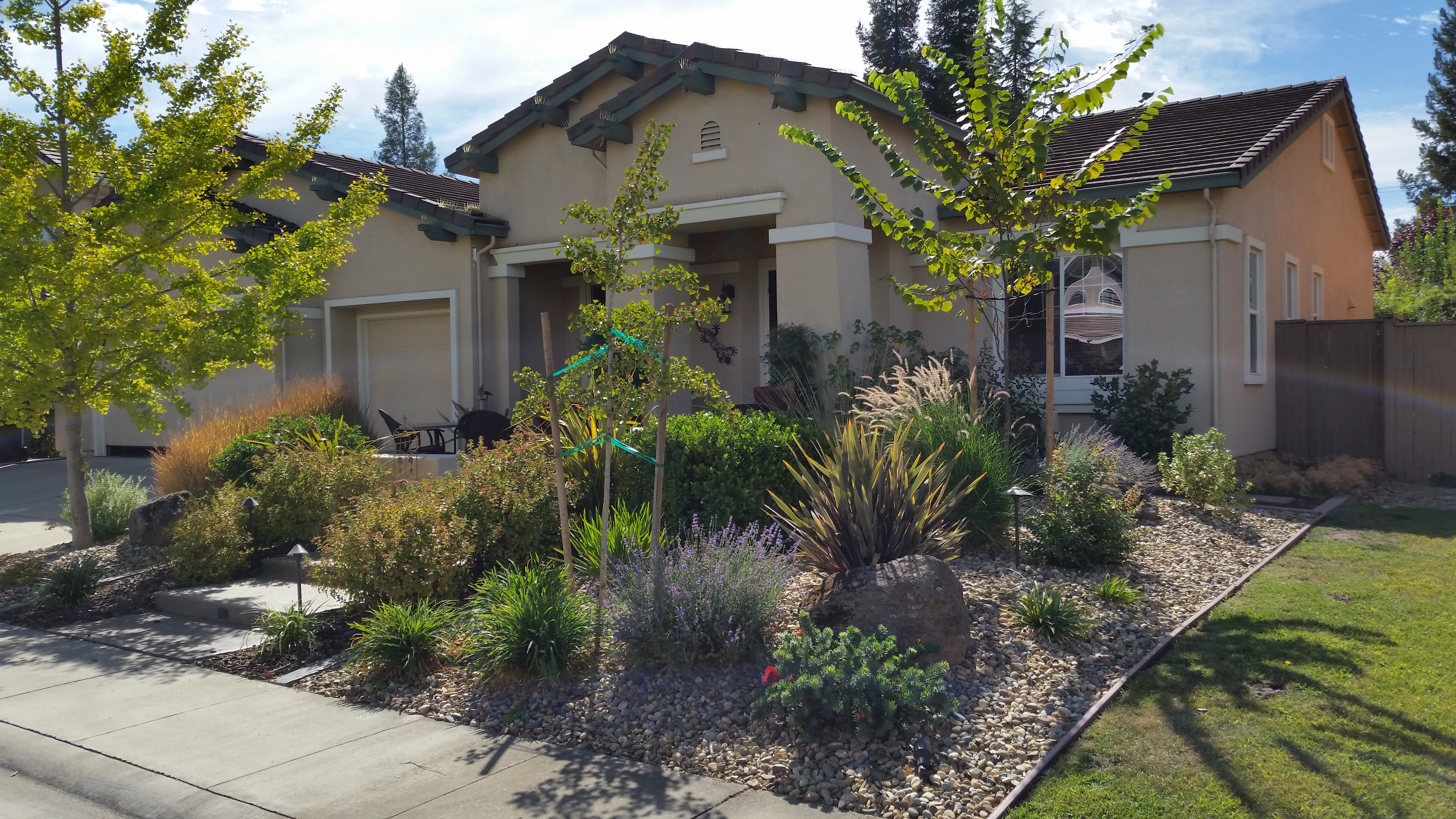 Ries Landscaping image 4