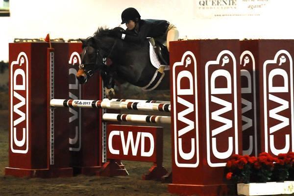 Pineridge Equestrian Center, LLC image 9