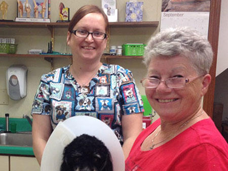 All Paws & Claws Veterinary Clinic in Angola, IN, photo #3