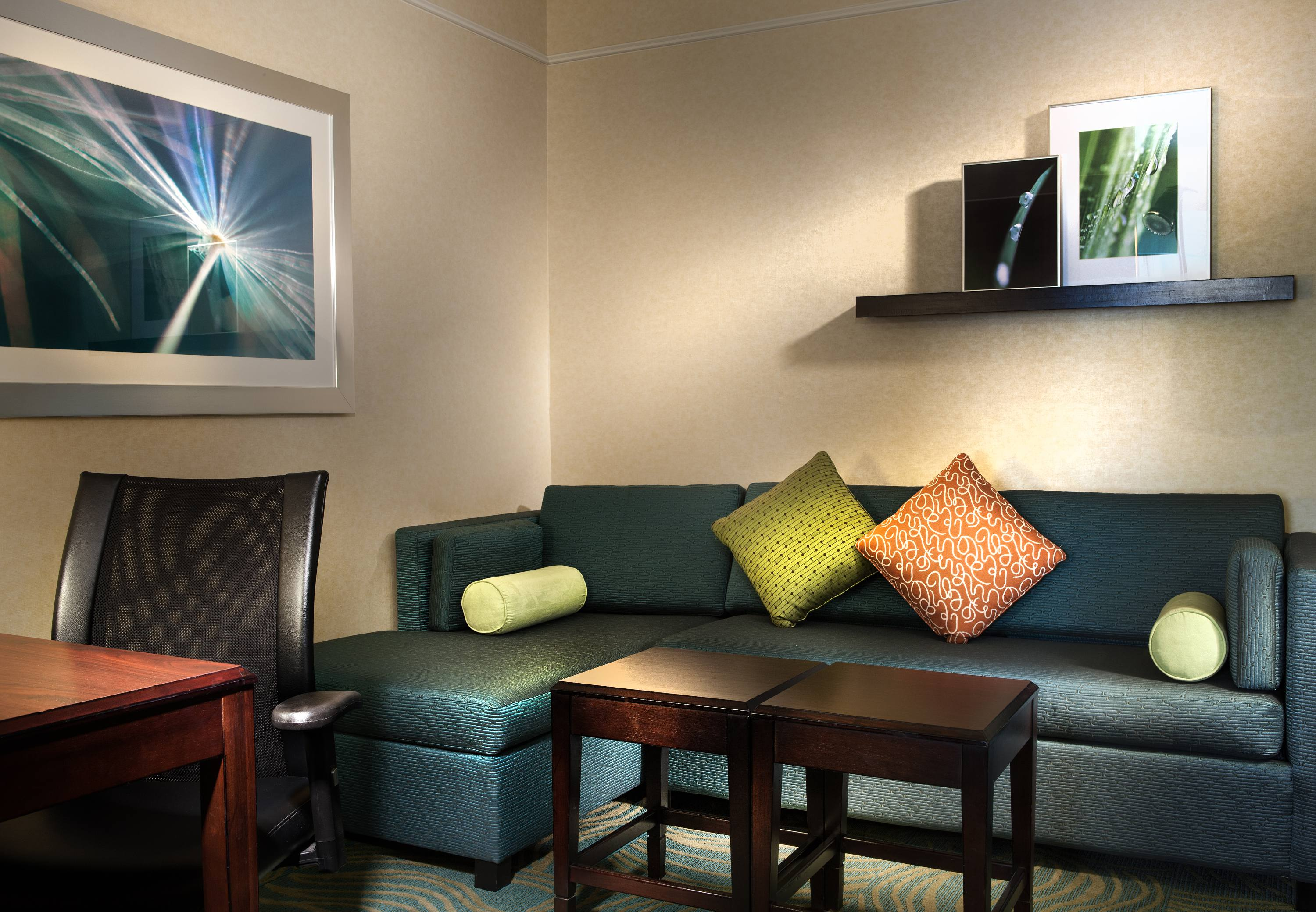 SpringHill Suites by Marriott Dallas DFW Airport North/Grapevine image 10